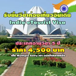 evisa india 3